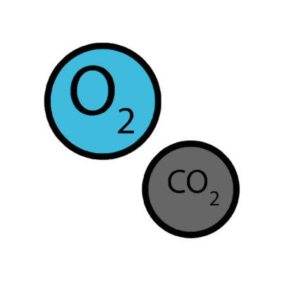 Breathing: Is more oxygen really better? Part 1